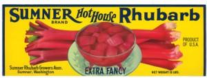 Hot_house_yellow_web