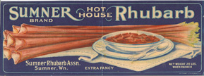 Ruhbarb_1931_crate_web